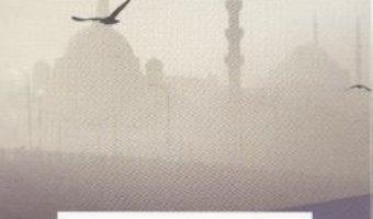 Istanbul Istanbul – Burhan Sonmez PDF (download, pret, reducere)