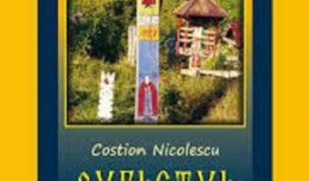 Sufletul intre rai si iad – Costion Nicolescu PDF (download, pret, reducere)