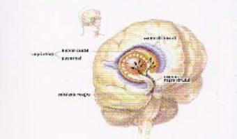 Cartea Cum sa faci fata bolii lui Parkinson – Bridget Mccall (download, pret, reducere)