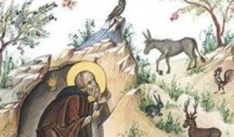 Cartea Picaturi din dragostea lui Dumnezeu (download, pret, reducere)