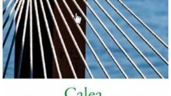 Cartea Calea hamacului – Marga Odahowski (download, pret, reducere)