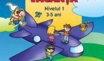Cartea Jocuri de vacanta nivelul I 3-5 ani – Livia Andreescu (download, pret, reducere)