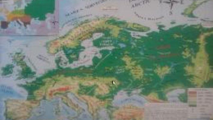 Pret Carte Harta fizica a Europei + Harta politica a Europei 1:20.000.000/1:22.000.000