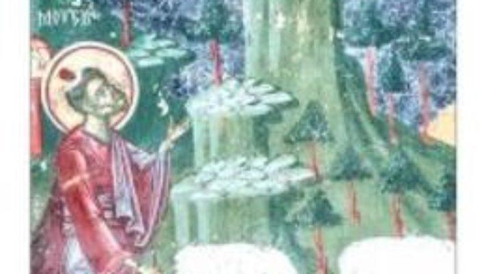 Pret Carte Despre vederea lui Dumnezeu – Constantin Coman