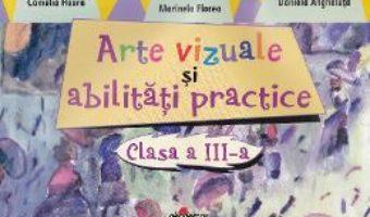 Pret Carte Arte vizuale si abilitati practice cls 3 – Camelia Hoara