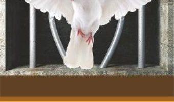 Pret Carte Marturia convertirii unui fost detinut: Parintele Paisie, Sfantul si dascalul meu