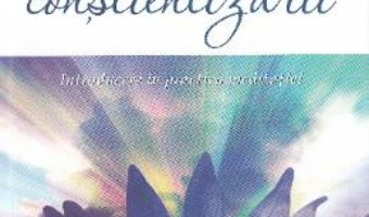 Download  Miracolul constientizarii – Thich Nhat Hanh PDF Online