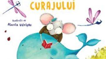Cartea Cartea curajului – Adina Rosetti (download, pret, reducere)