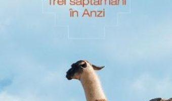 Download  Trei saptamani in Anzi – Marius Chivu PDF Online
