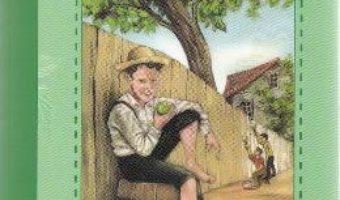 Download  Aventurile lui Tom Sawyer – Mark Twain PDF Online