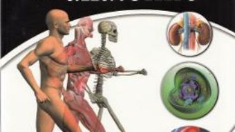 Download  Atlas de anatomie – Irina Paller PDF Online