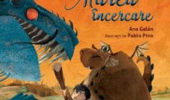 Download  Mondragon. Marea incercare – Ana Galan PDF Online