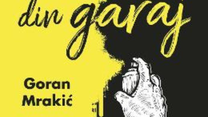 Cartea Povestiri din garaj – Goran Mrakic (download, pret, reducere)