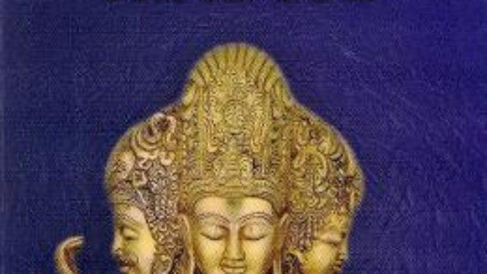 Cartea Micul ghid al mitologiei hinduse (download, pret, reducere)