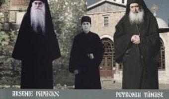 Cartea Parintii mei duhovnici. Marturii si trairi – Iustinian Stoica (download, pret, reducere)