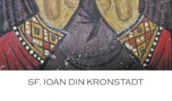 Cartea Cum gasim calea spre fericire – Ioan din Kronstadt (download, pret, reducere)