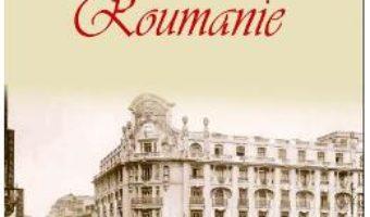 Download  Breve Histoire de la Roumanie – Ion Bulei PDF Online