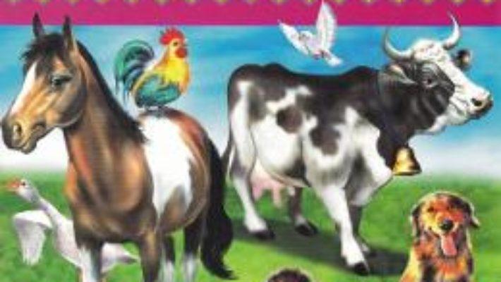 Cartea Animale domestice – Placarda, Loto, Desene de colorat (download, pret, reducere)