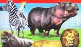 Cartea Gradina zoologica – Placarda, Loto, Desene de colorat (download, pret, reducere)