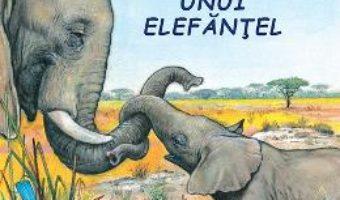 Cartea Aventurile unui elefantel – Sa cunoastem lumea inconjuratoare! (download, pret, reducere)