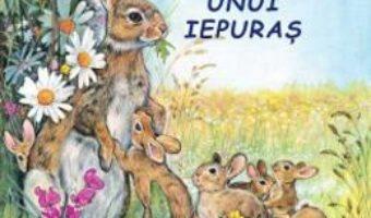 Cartea Aventurile unui iepuras – Sa cunoastem lumea inconjuratoare! (download, pret, reducere)