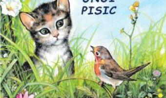 Cartea Aventurile unui pisic – Sa cunoastem lumea inconjuratoare! (download, pret, reducere)