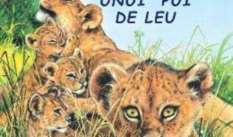 Cartea Aventurile unui pui de leu – Sa cunoastem lumea inconjuratoare! (download, pret, reducere)