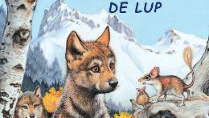 Cartea Aventurile unui pui de lup – Sa cunoastem lumea inconjuratoare! (download, pret, reducere)