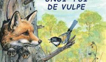 Cartea Aventurile unui pui de vulpe – Sa cunoastem lumea inconjuratoare! (download, pret, reducere)