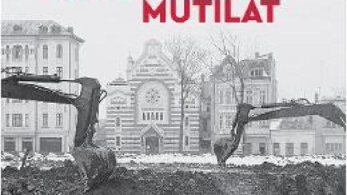 Cartea Bucurestiul mutilat – Andrei Pandele (download, pret, reducere)