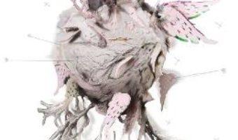 Cartea Poezii Imperfecte – Alina Caraghin (download, pret, reducere)