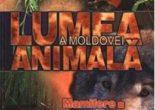 Cartea Lumea animala a Moldovei. Vol. 4: Mamifere (download, pret, reducere)