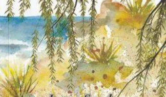 Cartea Limanul cu salcii – Ioana Sandu (download, pret, reducere)