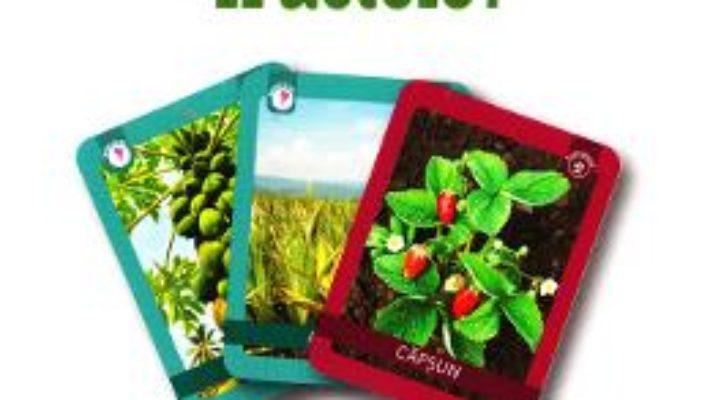Cartea Unde cresc fructele? 3 ani+ (Eduflash) (download, pret, reducere)
