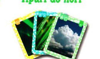 Cartea Fenomene ale naturii. Tipuri de nori 4 ani+ (Eduflash) (download, pret, reducere)