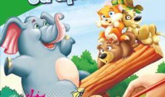 Cartea Pictam cu apa: Pui de animale (download, pret, reducere)