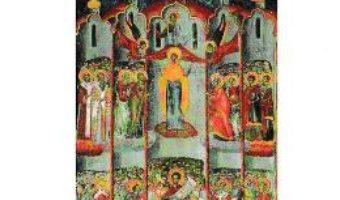 Cartea Acoperamantul Maicii Domnului. Cele mai frumoase predici (download, pret, reducere)
