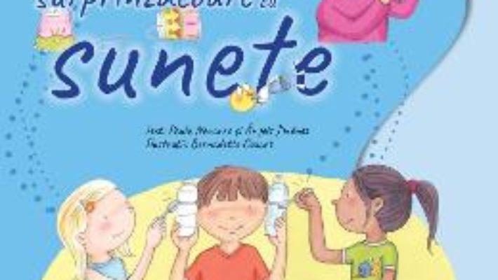 Cartea Experimente surprinzatoare cu sunete – Paula Navarro, Angels Jimenez (download, pret, reducere)