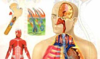 Cartea Enciclopedia corpului uman (download, pret, reducere)