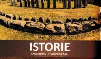 Cartea Istorie – Clasa 4 – Caiet de aplicatii – Delia Boieru, Valentina Nap (download, pret, reducere)
