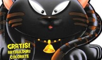Cartea Pisica – Abtibilduri colorate (download, pret, reducere)