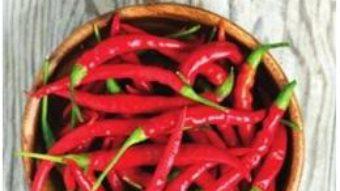Cartea Cartea de foc a ardeilor chilli – David Floyd (download, pret, reducere)