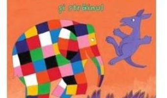 Cartea Elmer si strainul – David McKee (download, pret, reducere)