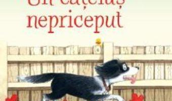 Cartea Povesti de la ferma. Un catelus nepriceput – Heather Amery (download, pret, reducere)