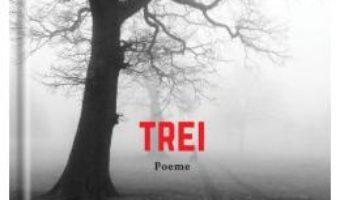 Cartea Trei – Roberto Bolano (download, pret, reducere)