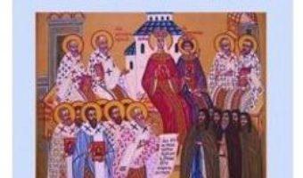 Cartea Conciliile Ecumenice – Lucian Dinca (download, pret, reducere)