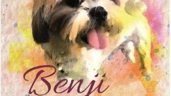 Cartea Benji, darul divin – Teodora Pascu (download, pret, reducere)