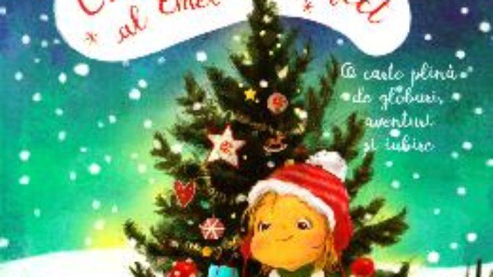 Cartea Craciunul perfect al Emei – Ioana Chicet-Macoveiciuc (download, pret, reducere)