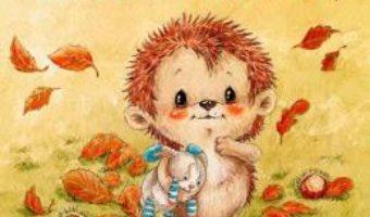 Cartea Somn usor, micutule arici! – Sophie Schoenwald, Nadine Reitz (download, pret, reducere)