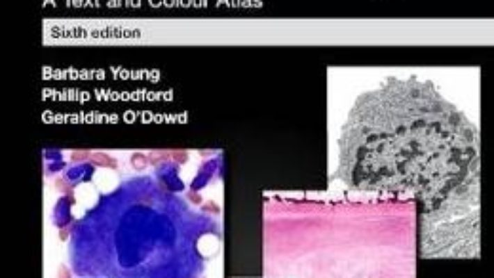 Cartea Wheater's Functional Histology: A Text and Colour Atlas – Barbara Young, Phillip Woodford, Geraldine O'Dowd (download, pret, reducere)